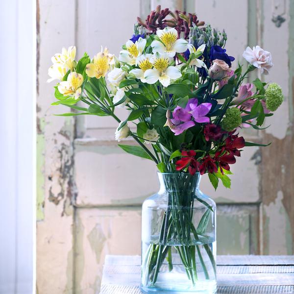 oferta paquete de flores frescas para mayo para crear ramos en casa