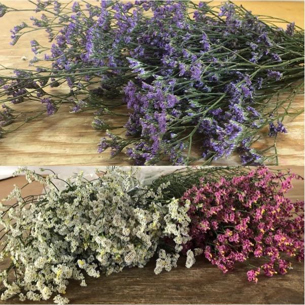 flores de limonium para crear un ramo en tu casa